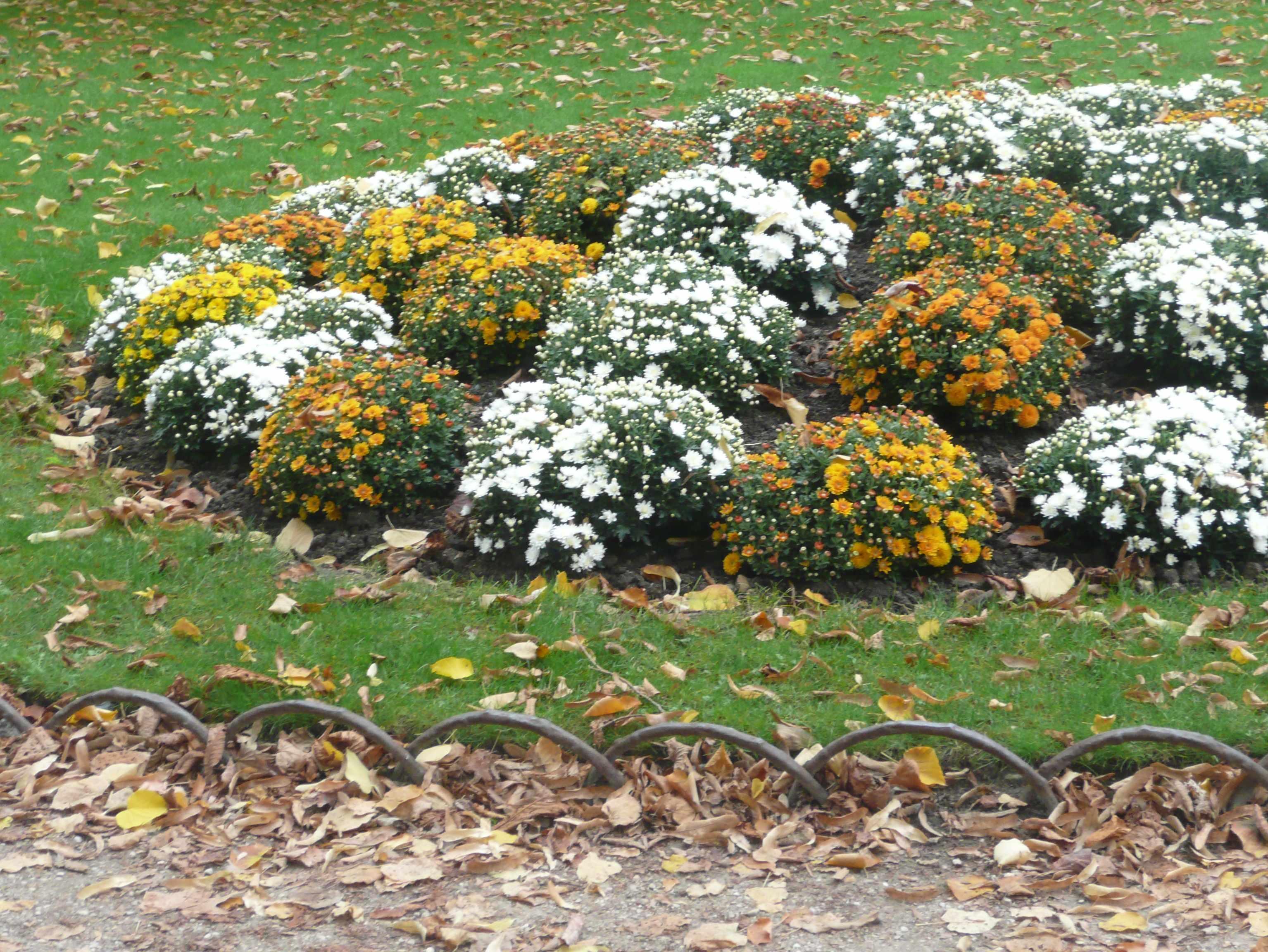 Automne au jardin du luxembourg for Au jardin du luxembourg