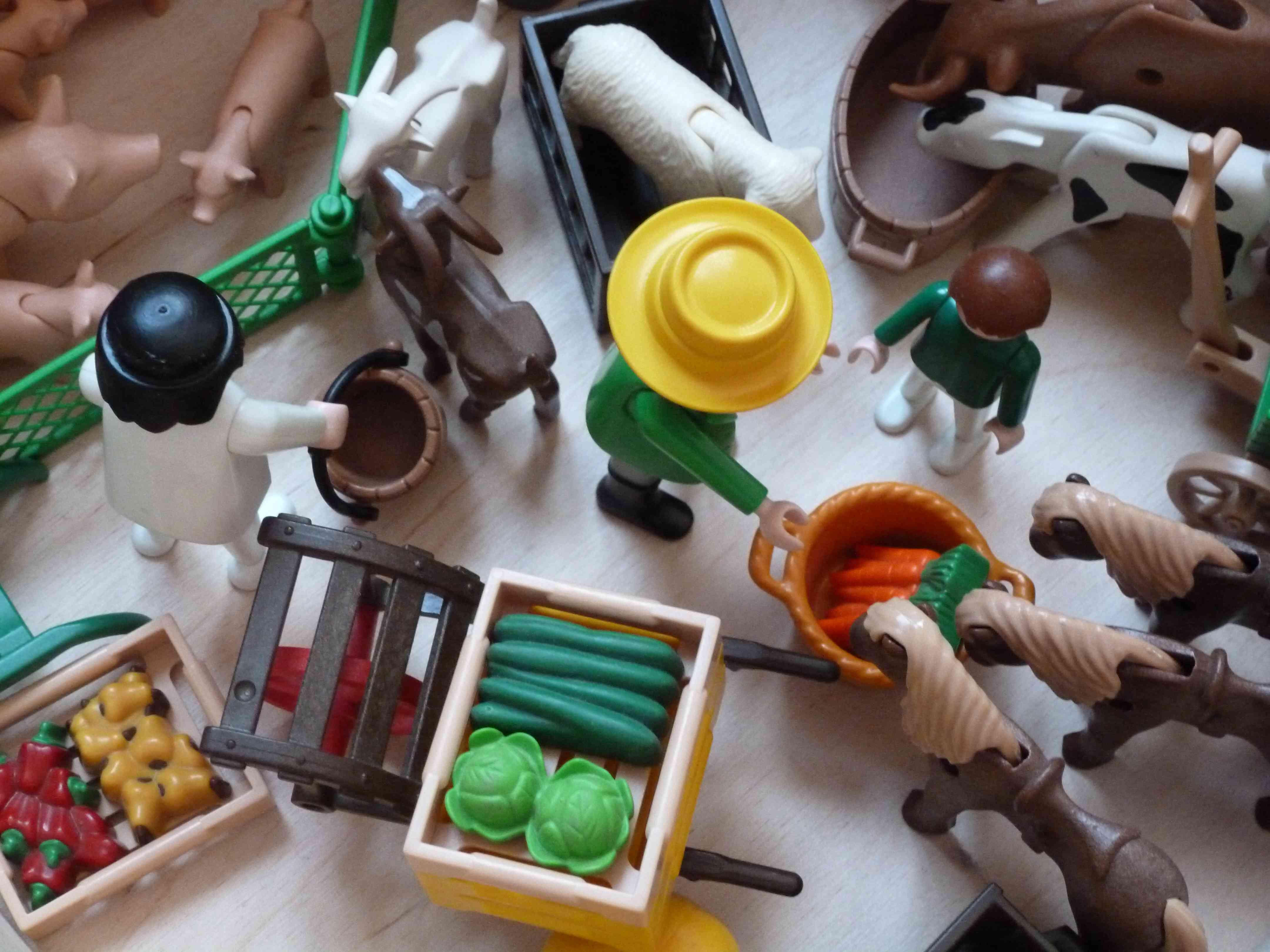 Idée Rangement Playmobil playmobil & cie