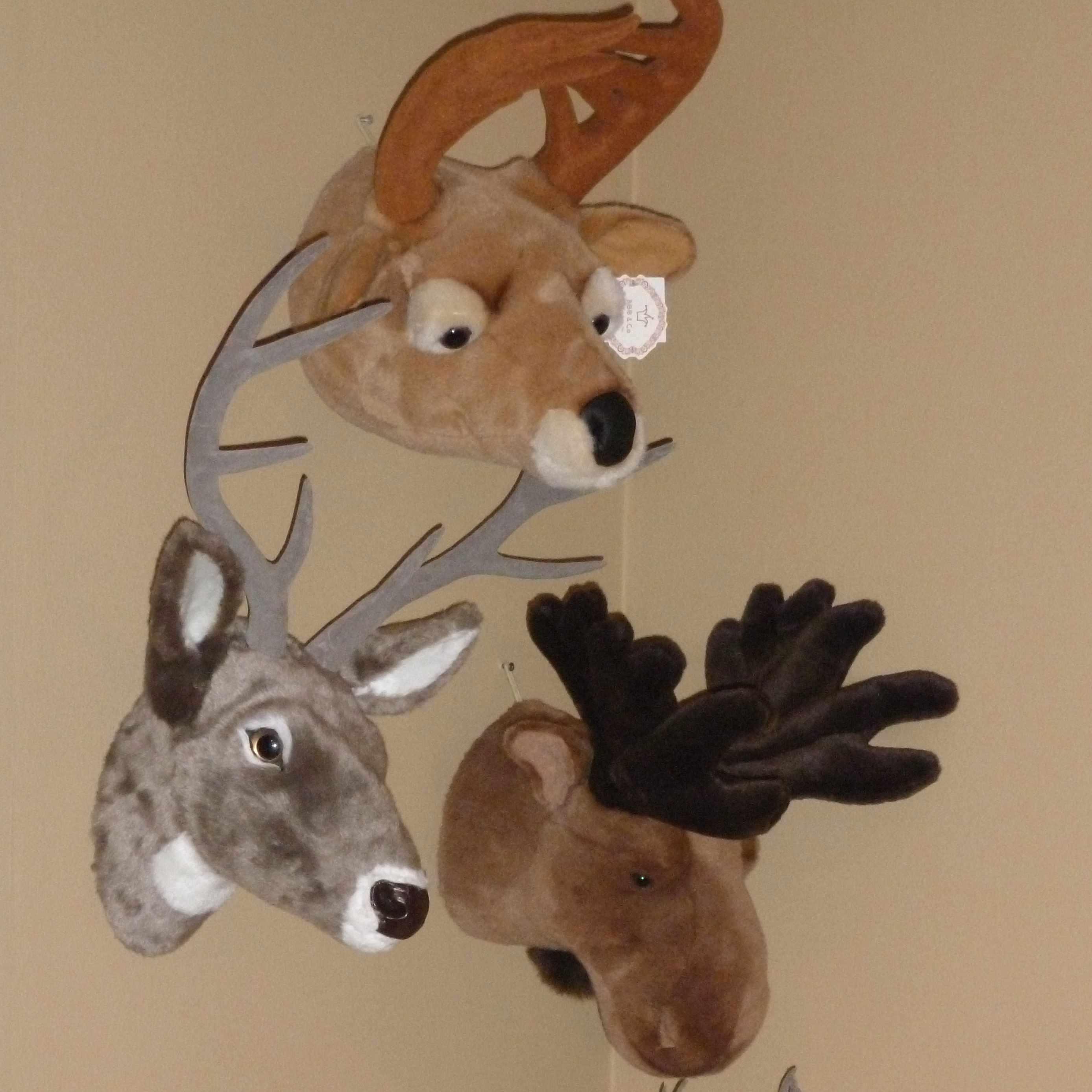 renne-elan-caribou trophee en peluche Bibib & Co chez Slots