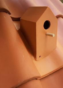 Birdhouse Klaas Kuiken