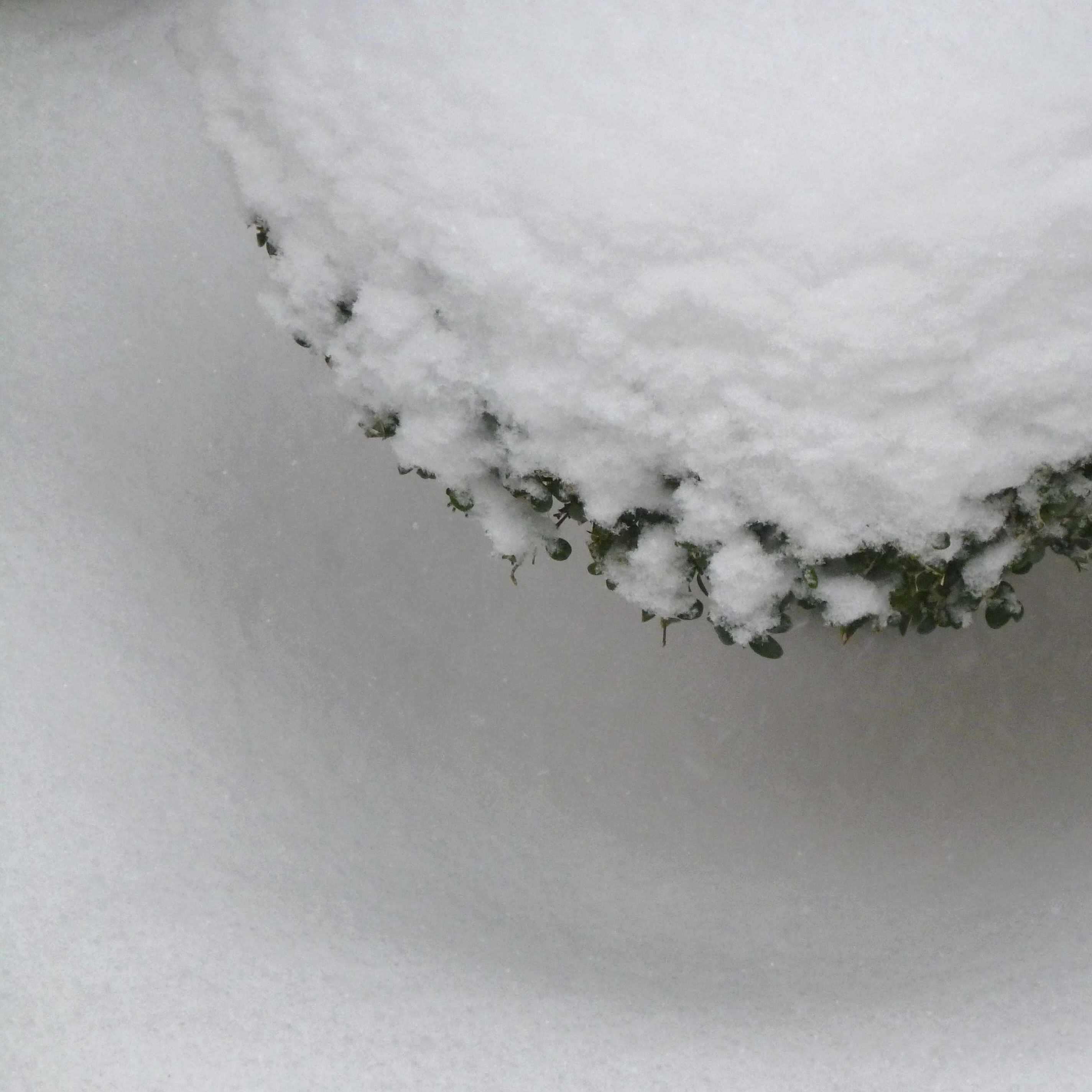 Boules de neige 03-2013
