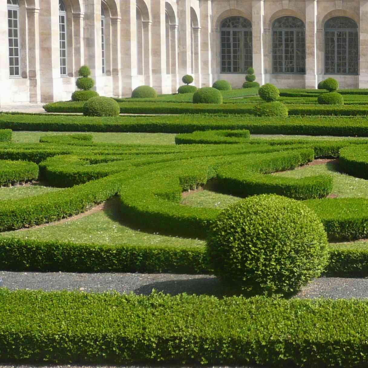 Jardin cloître St Denis 2011