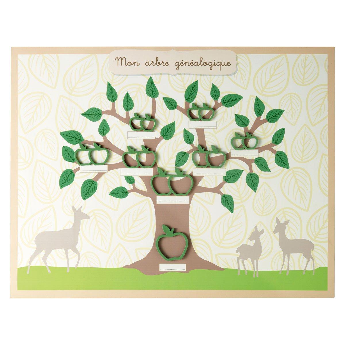 MDM enfant arbre genealogique magnétique