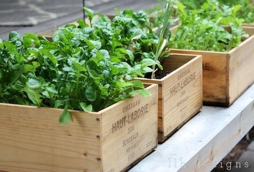 LLH Designs Un jardin en caisses BLOG Rue de la deco