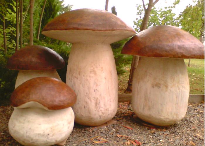 L-univers-du-champignon Photo-de-famille