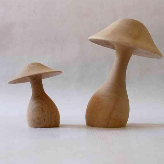 Little boheme duo_champignons_bruts