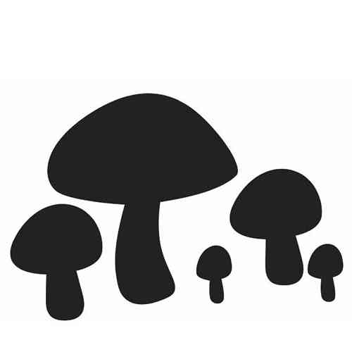stickers-champignon-ardoise Deco-soon