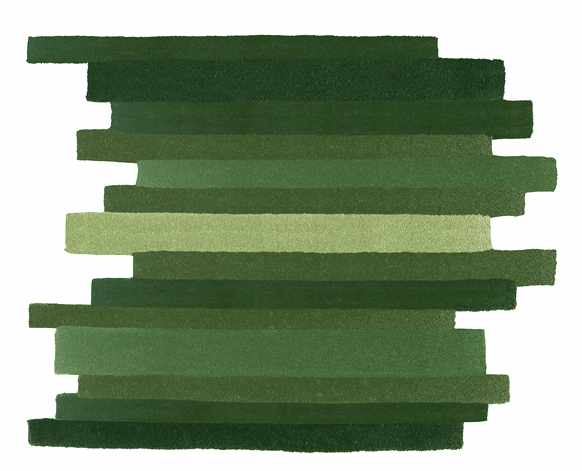 tapis parquet vert Ora-ito