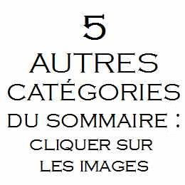 5 categories
