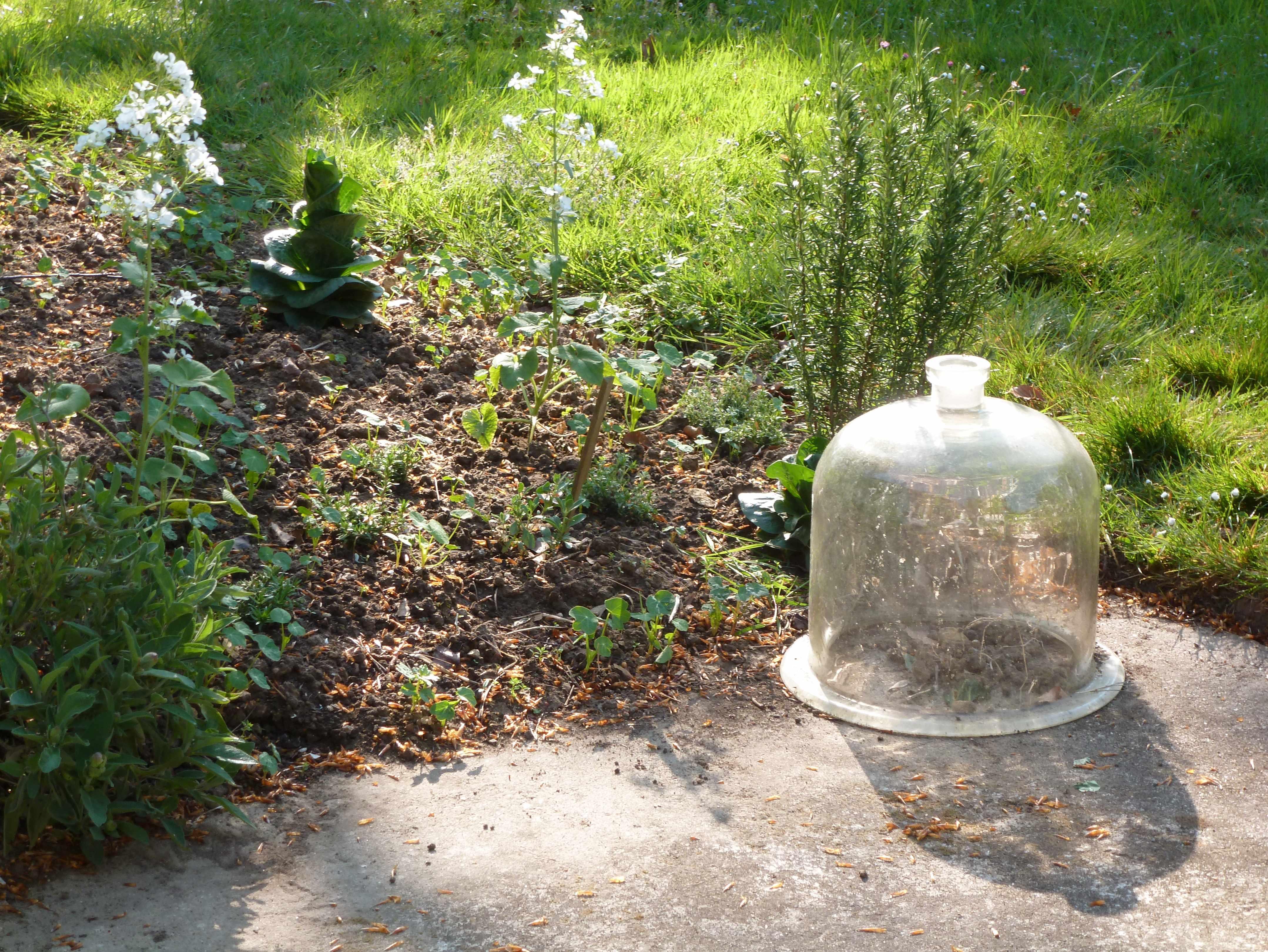 cloche au jardin matin de Paques -A-tous-les-etages