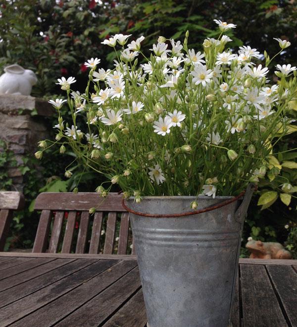 bouquet-fleurs-champ Carnets-de-Carreco