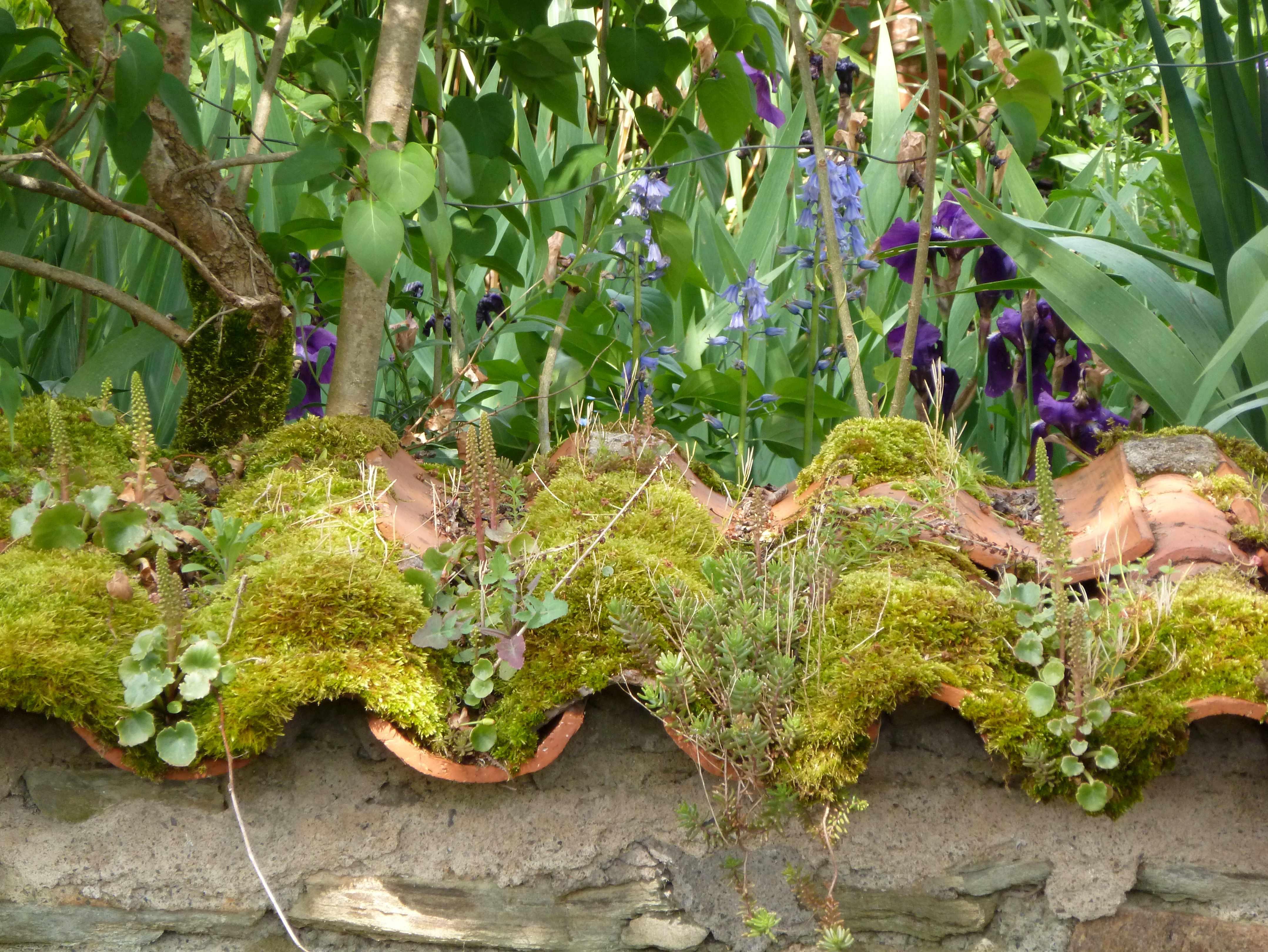 Mur-tuiles-jardin-beau-village-Vendee