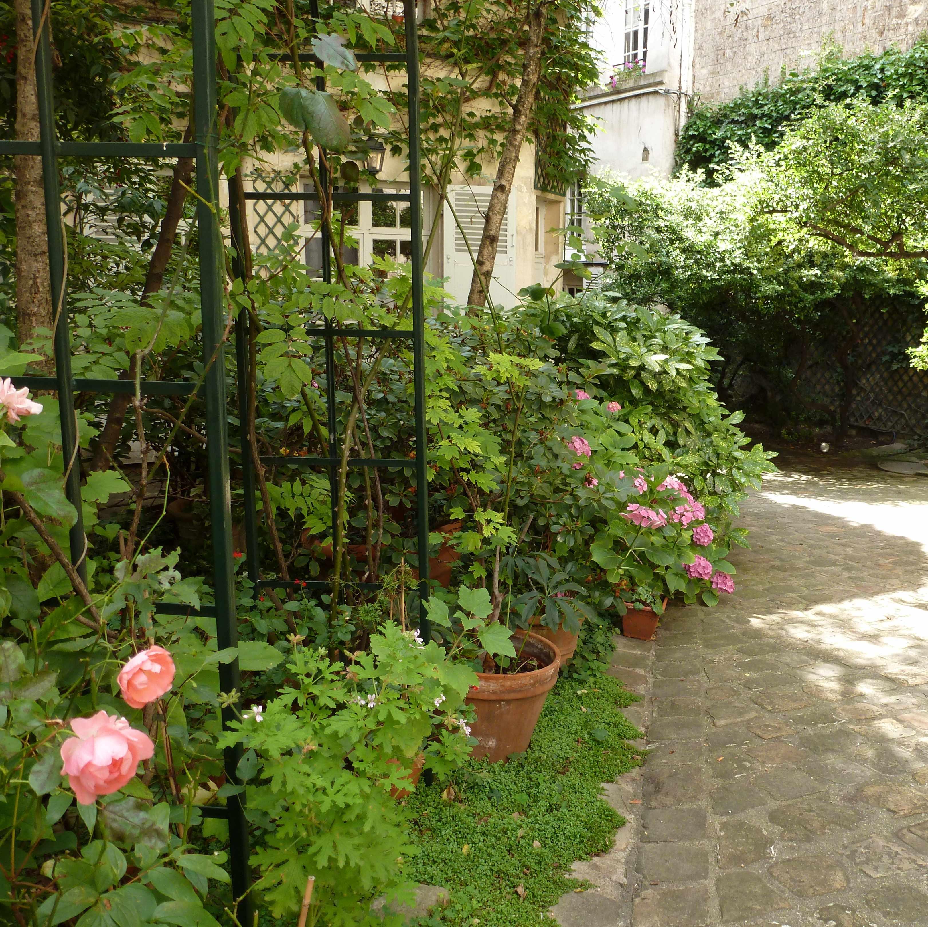 Paris cour fleurs roses 2014