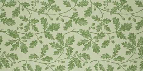 papier peint Oakwood feuilles de chene vert