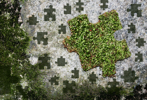 My-Moss puzzle