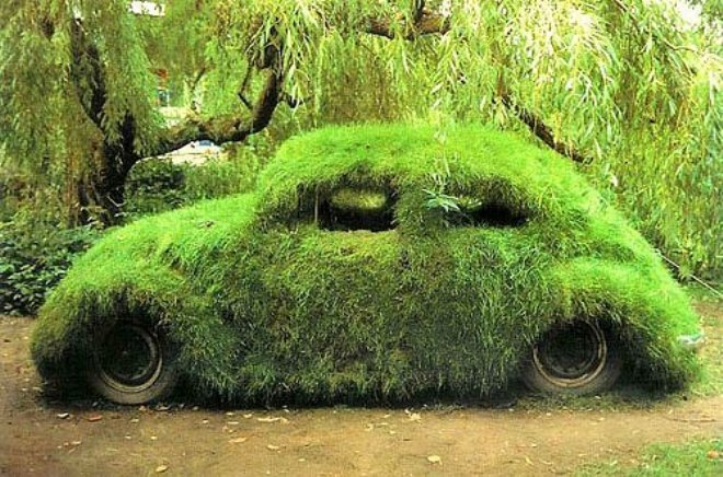 WV en mousse Moss car 2012forum