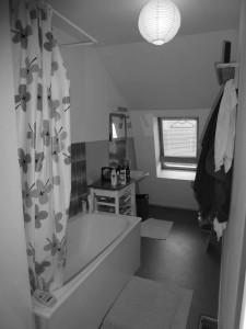 SDB avant - baignoire et lavabo Lille 2013