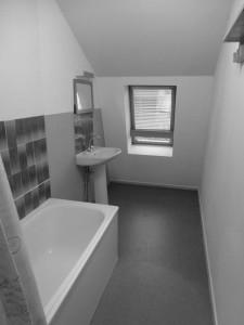 SDB avant travaux - baignoire et lavabo Lille 2013