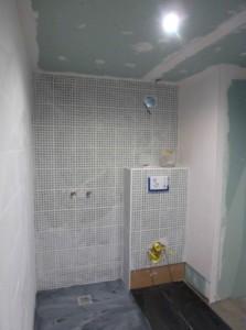 SDE adaptée au handicap 2015 Travaux douche et WC