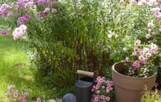 Massifs-jardin-carrelage-imitation-bois-et-bordure-pierre-A-tous-les-etages-2016