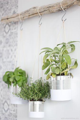 Créez votre jardin aromatique suspendu- La Délicate Parenthèse