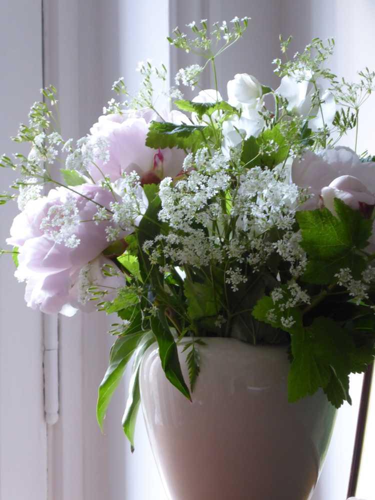 bouquet_pivoines_ombelles_groseiller_pois-de-senteur
