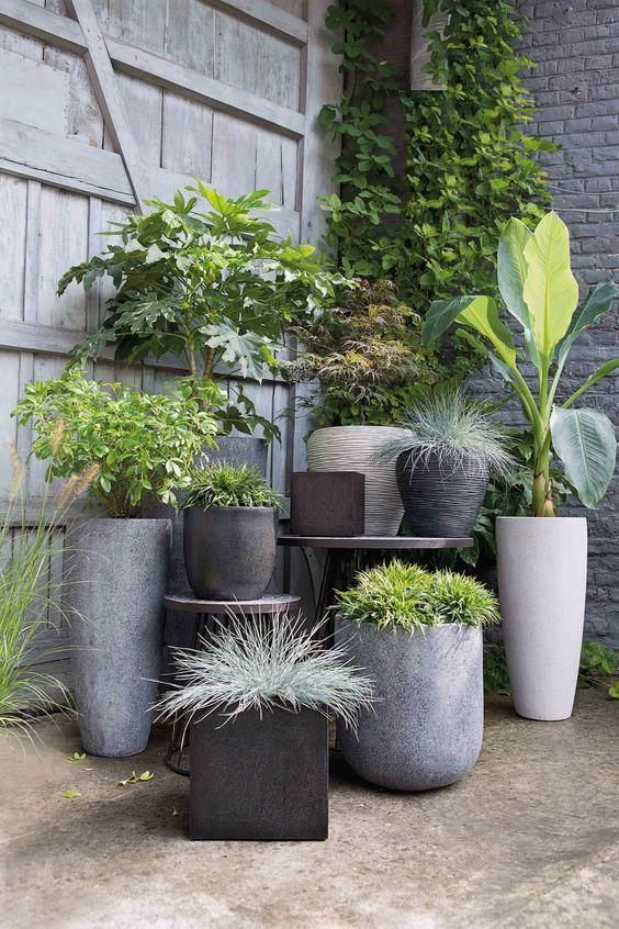 pots-fleurs-aspect-beton-Pinterest-cote-maison