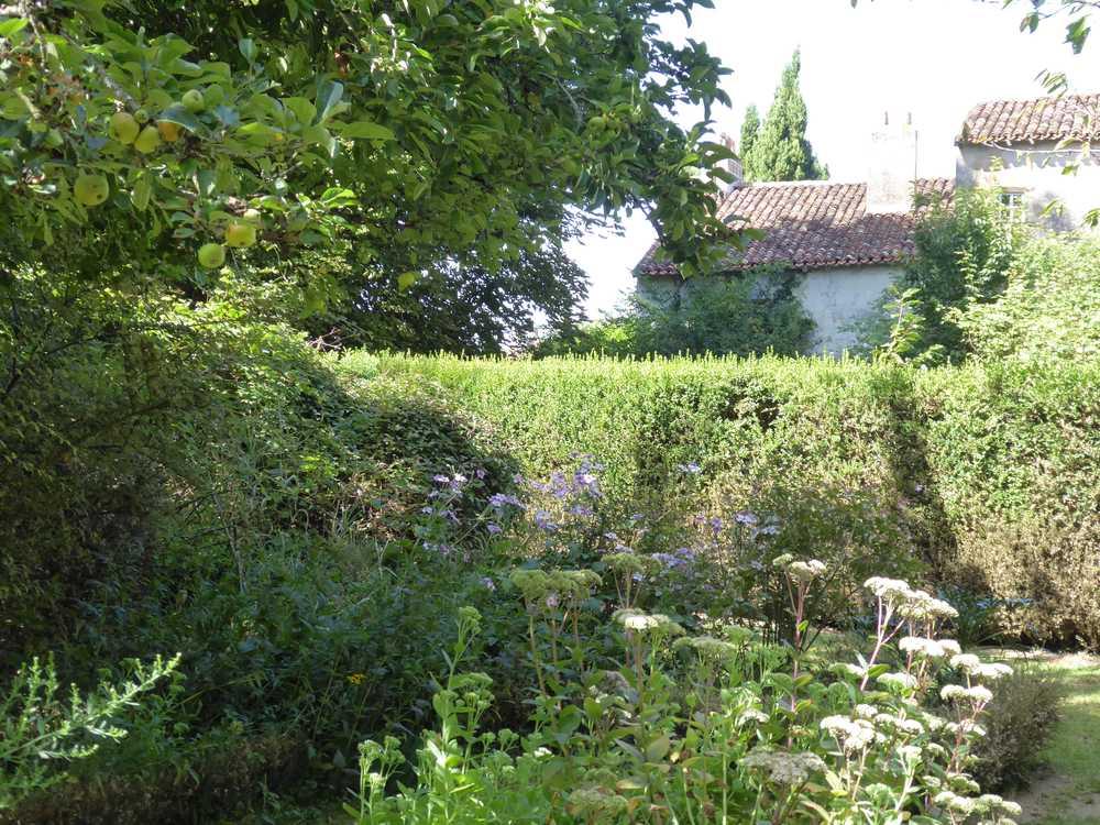 2017-08_Poitou_prieure_Laverre_Aslonnes_jardin_sauges
