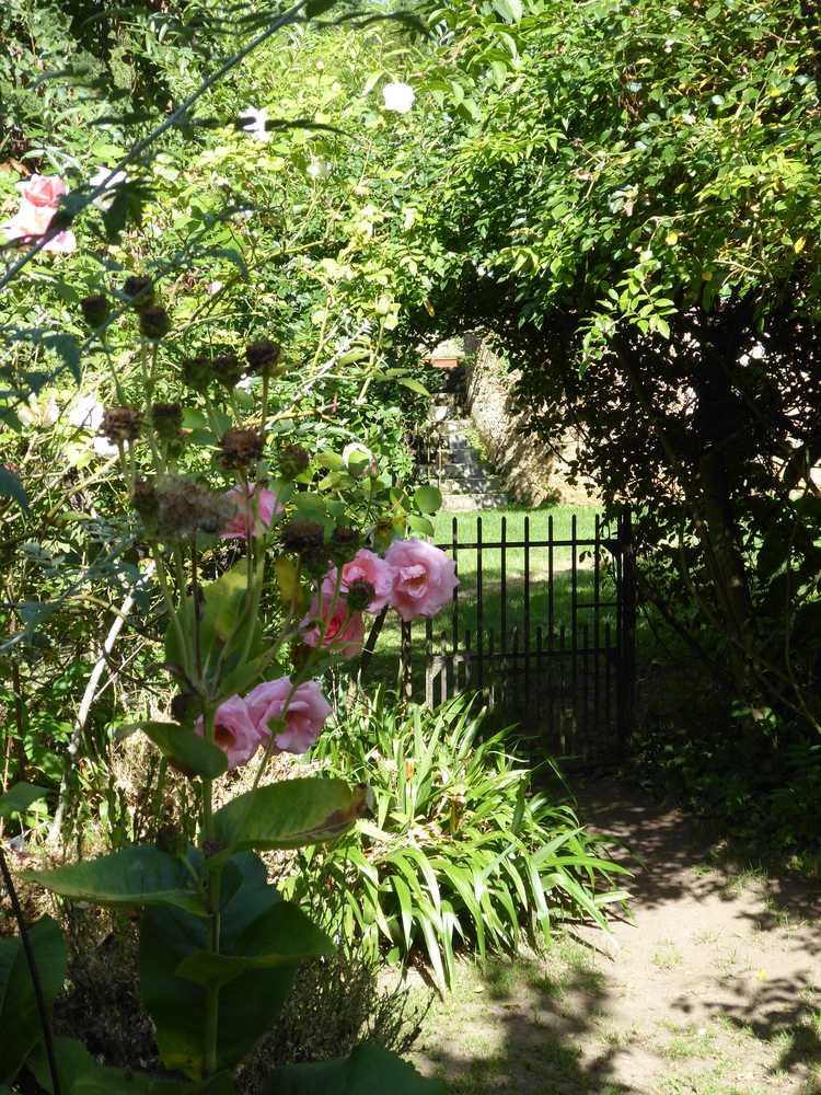 2017-08_Poitou_prieure_Laverre_Aslonnes_jardin_roseraie