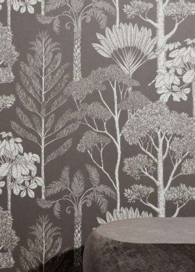 PP_Trees_arboretum_fond-noir_PP70