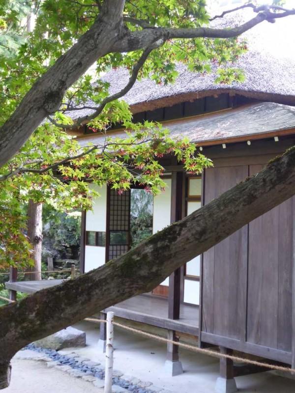 2019-10-18_Jardins-A-Kahn_jardin-japonais_maison-toit-chaume